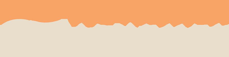 the priceless journey logo design