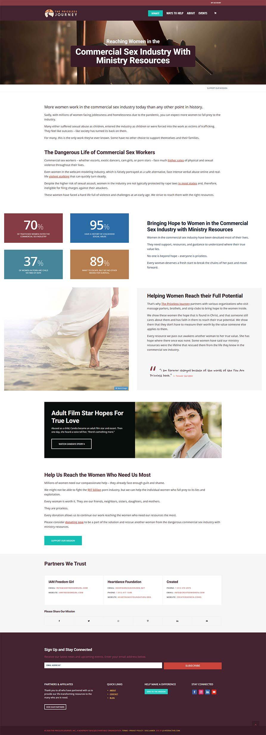the priceless journey web design